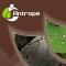 Antrope_JULHO_2_capa - Detail
